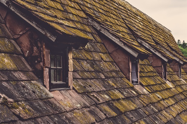 Epdm, de beste dakbedekking voor jouw dak.